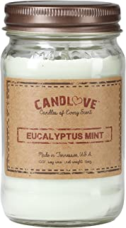 "product image for Candlove ""Eucalyptus Mint"" Scented 16oz Mason Jar Candle 100% Soy Made in The USA"