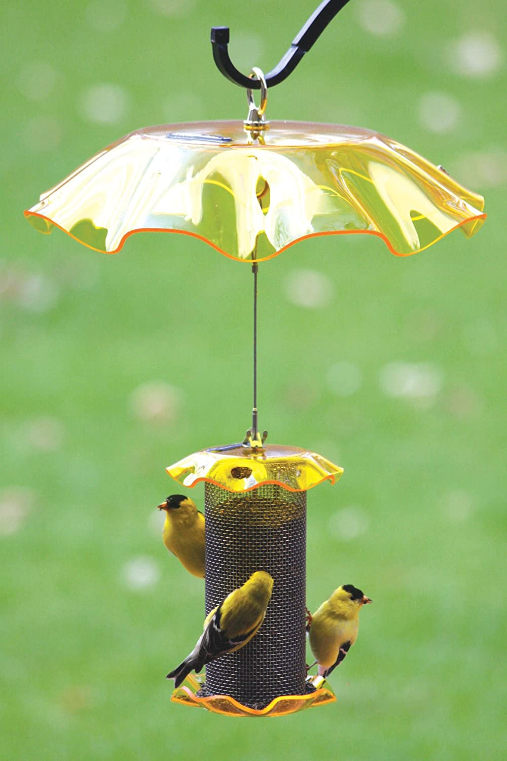 tube feeders upside finch feeder pet bird down wild perky house