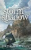 Stormshadow (Storms in Amethir Book 2)