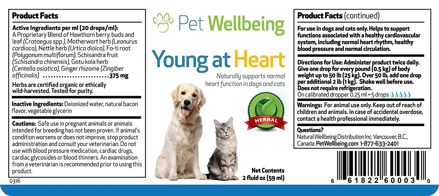 Amazon.com : Pet Wellbeing Young at Heart for Cats - Natural Support ...