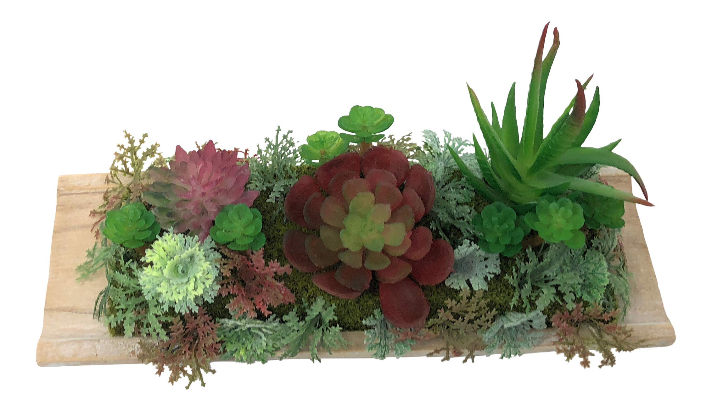 Nickanny's Modern Mini Artificial Succulent Plants Hens and Chicks - Faux Plant Home Decor On Wood Board for Office or Home (Red Green Hens Chicks Aloe Long Wooden Stand)