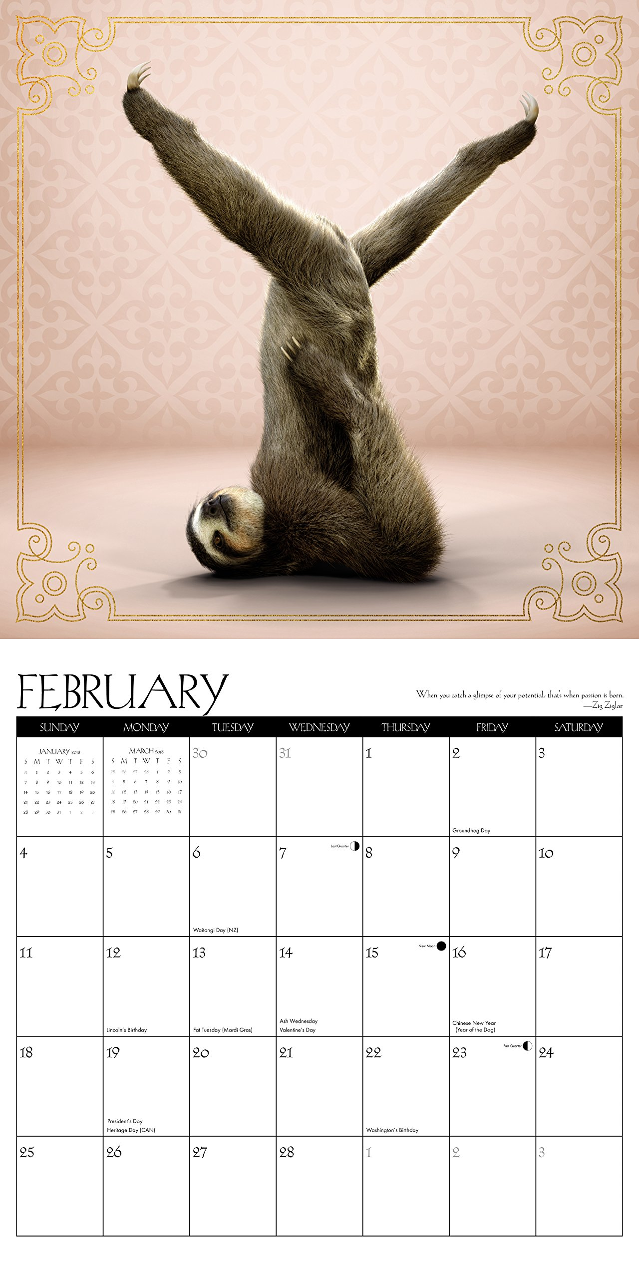Sloth Yoga 2018 Wall Calendar: Amazon.es: Willow Creek Press ...