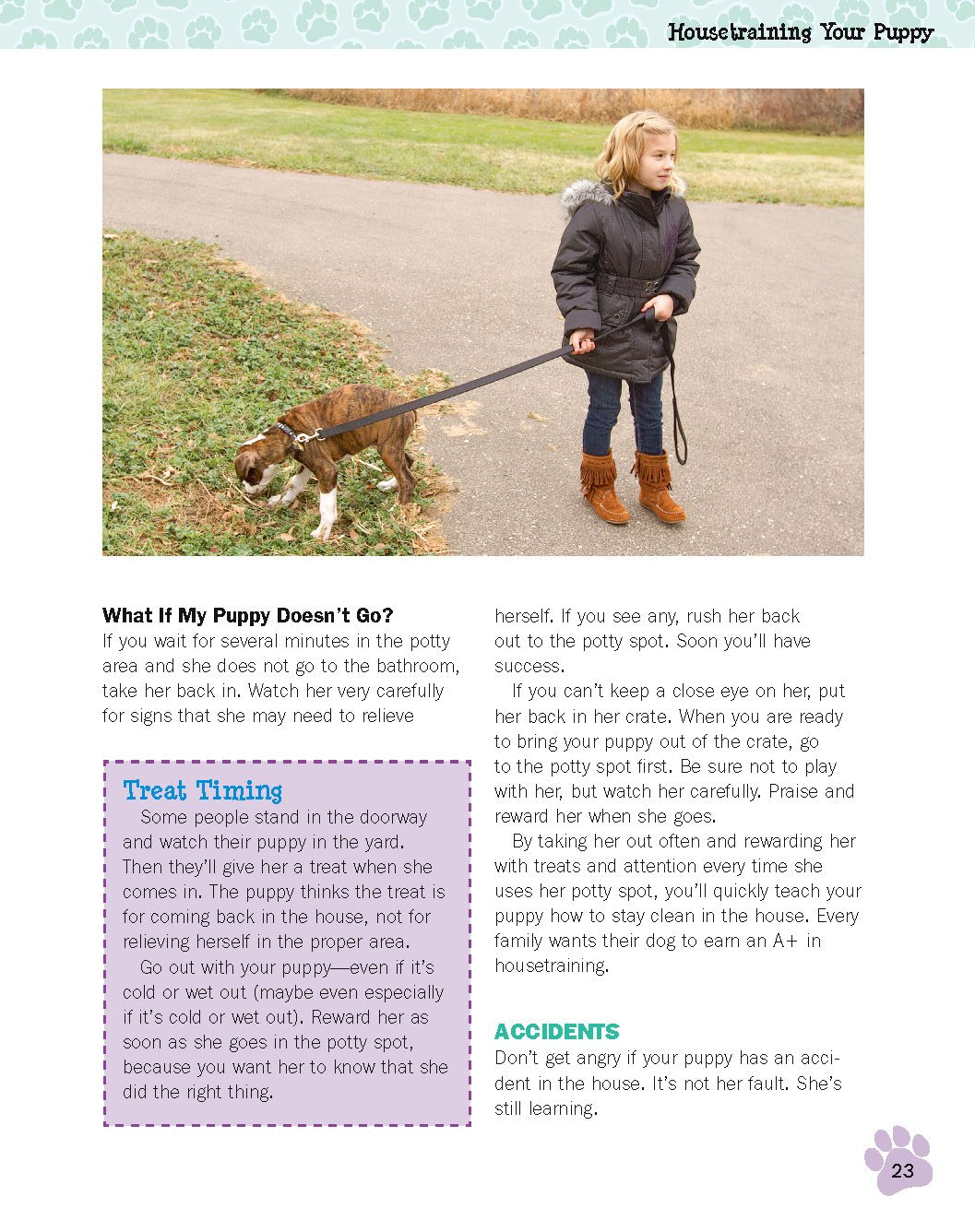 4 ways to attract a child to dog training