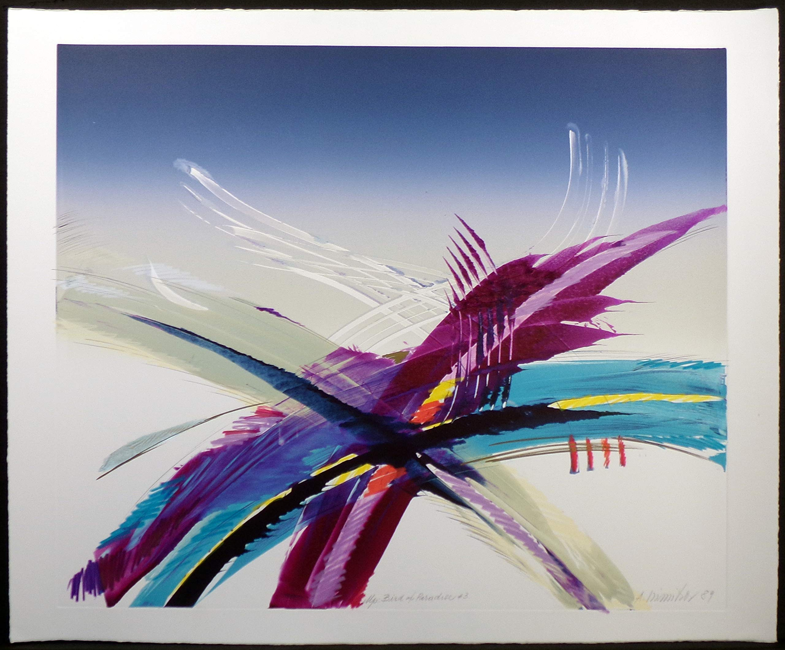 Bird of Paradise #3 by