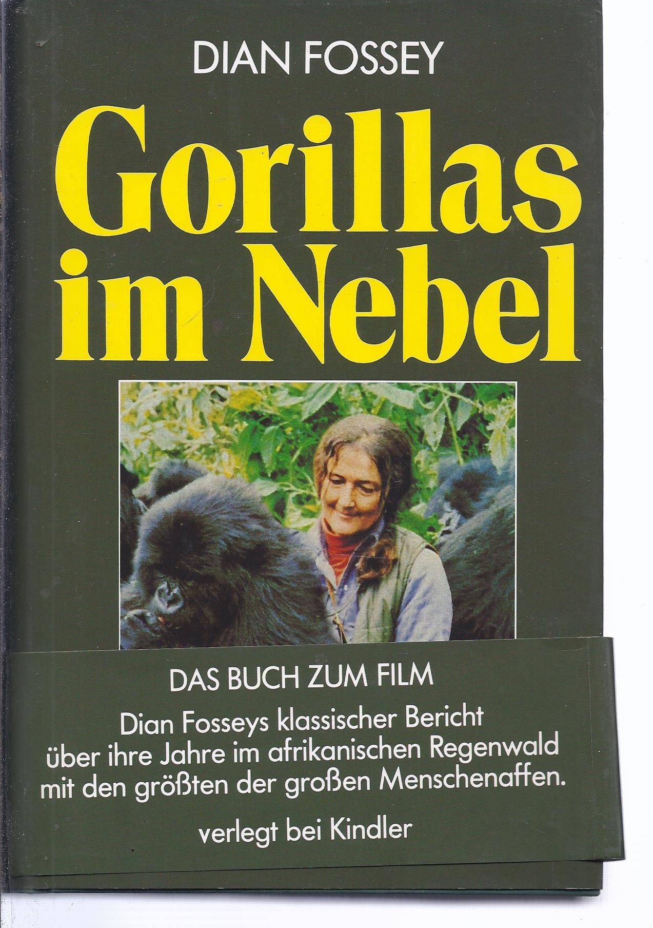 gorillas im nebel