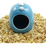 Alfie Pet by Petoga Couture - Dinosaur Hut for Small Animals like Dwarf Hamster and Mouse