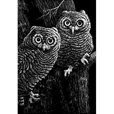 Scratch Art Black Coated Scratchboards 8 1/2 in. x 11 in. pack of 10: Home & Kitchen