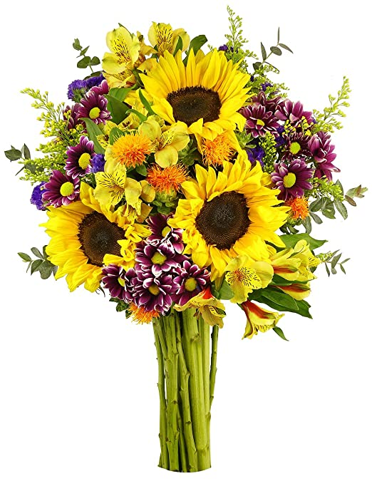 Amazon.com : Benchmark Bouquets Flowering Fields, No Vase : Grocery ...