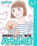 ハートのしっぽ67 (週刊女性コミックス)