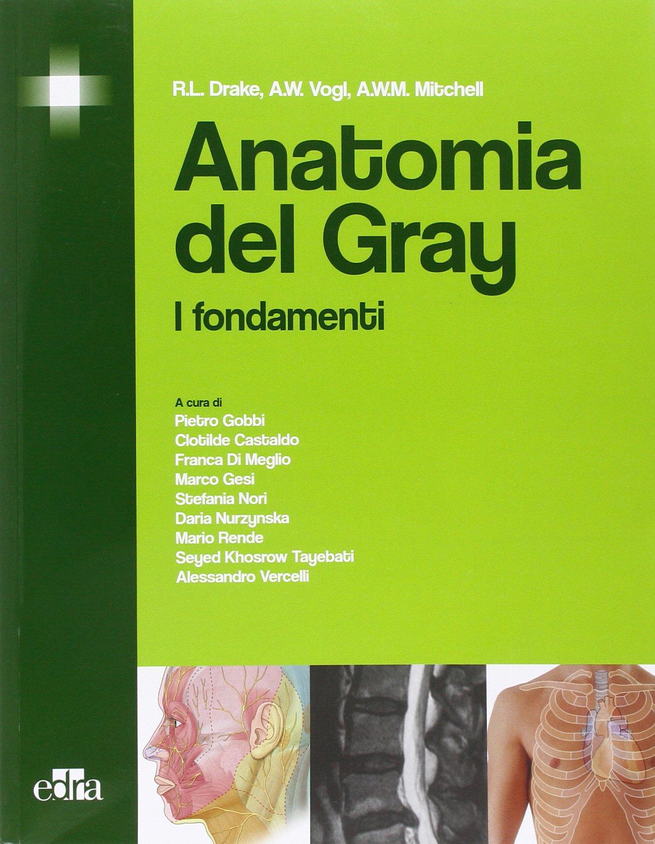 Anatomia del Gray. I fondamenti: Amazon.es: Richard L. Drake, A ...