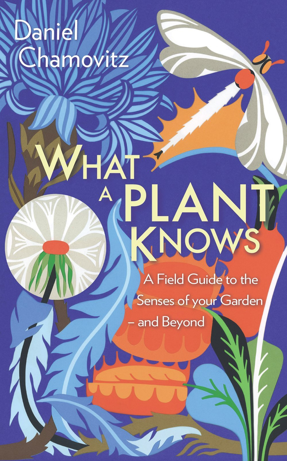 What a Plant Knows (English Edition)