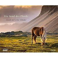 Die Insel der Pferde: Island und seine Isländer 2020 – Pferde-Kalender im Querformat 52 x 42,5 cm