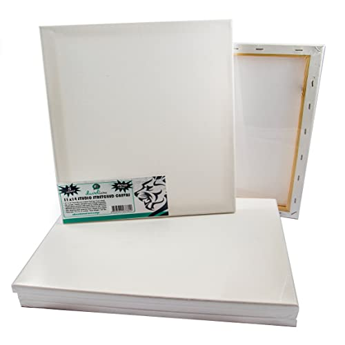 blank canvases for art amazon co uk