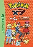 Pokémon 16 - Le château de combat