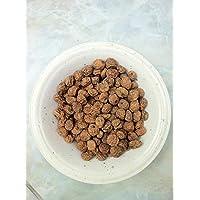 Las semillas orgánicas: Cyperus esculentus tuerca US Chufa