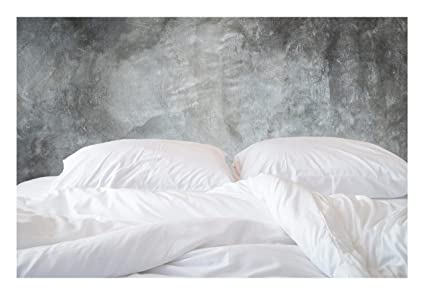 Amazoncom 500 Thread Count Organic Cotton Duvet Cover 500tc King