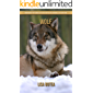Wolf: Amazing Pictures & Fun Facts on Animals in Nature