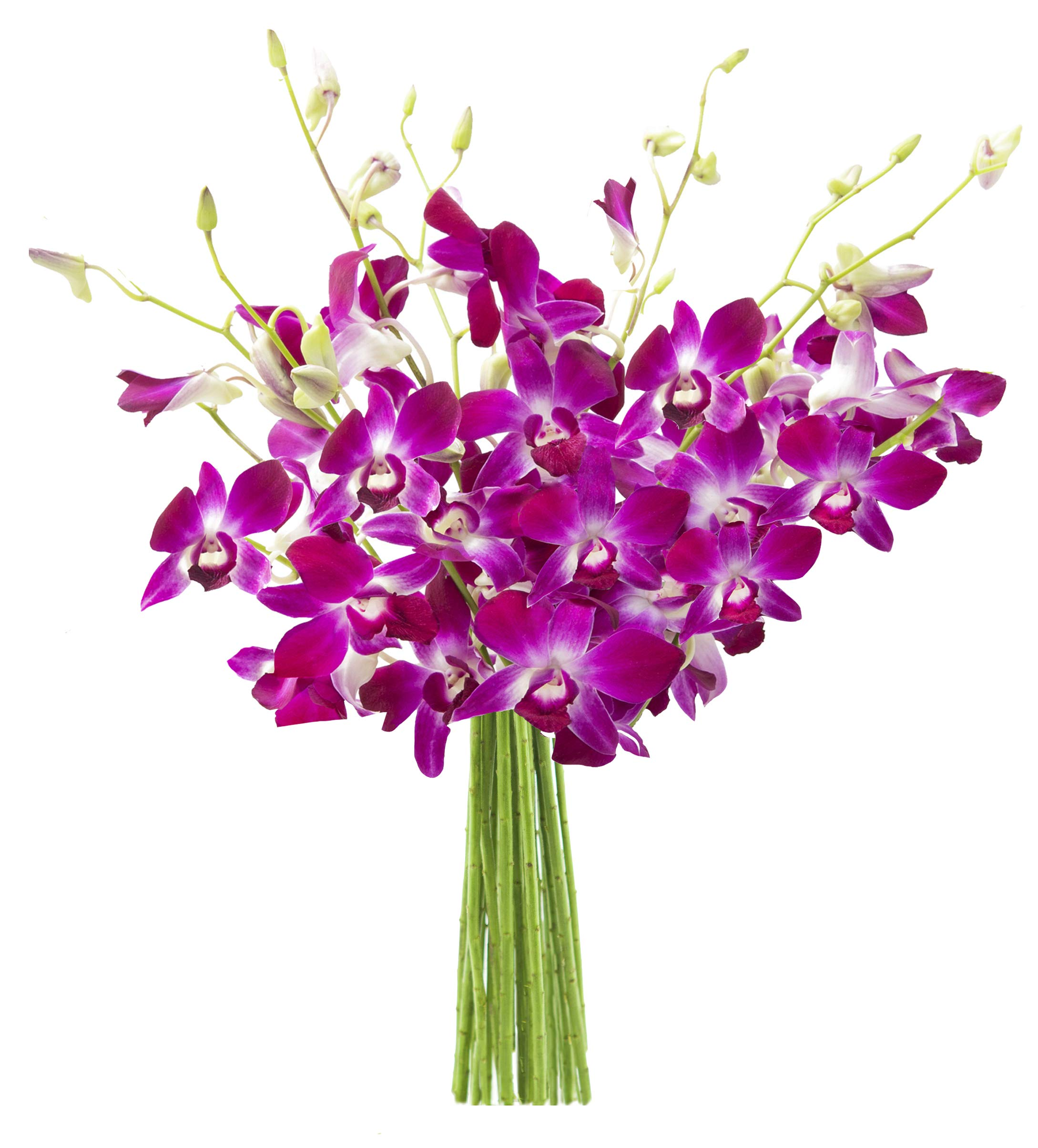 KaBloom Bouquet of Purple Orchids from Thailand