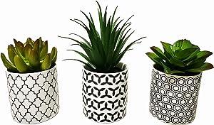 Pretty Home Potted Artificial Succulent Plants, Set of 3, Tile Pattern Pots