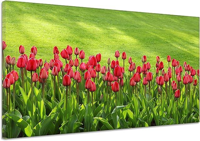 Tulipanes flores flores jardín Fondo Verde Lienzo Póster Impresión de vv1918, lona, verde, 90x60: Amazon.es: Hogar