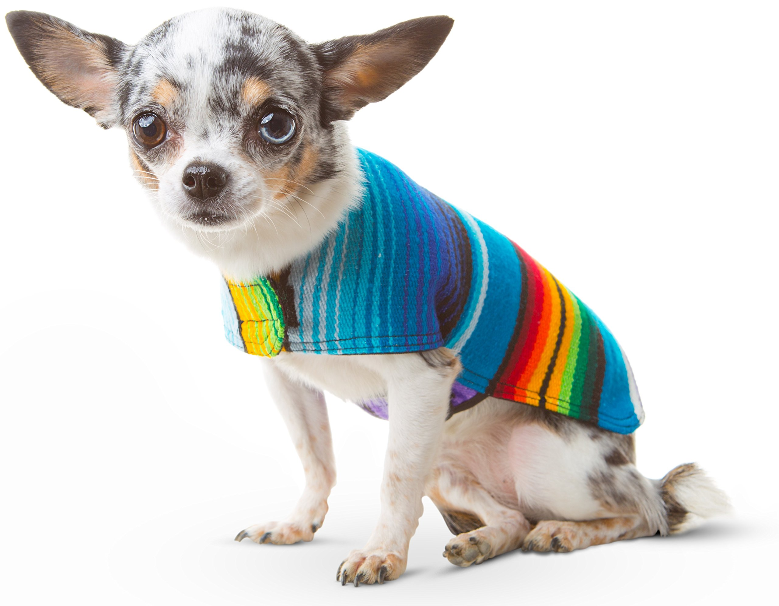 Baja Ponchos Dog Clothes - Handmade Dog Poncho - Cinco De Mayo Costume from Authentic Mexican Blanket (No Fringe, XXS)