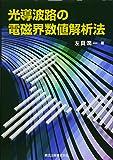 光導波路の電磁界数値解析法
