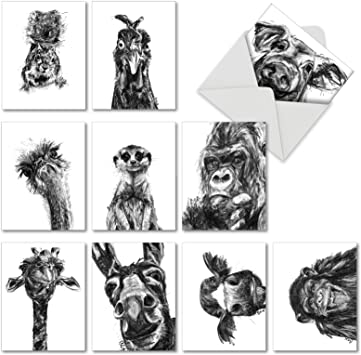 Incredible Ape Framed Photo Art Greeting Card Blank Inside Any Occasion