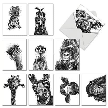 Amazon 10 artistic note cards with envelopes 4 x 5 10 artistic note cards with envelopes 4 x 5 m4hsunfo