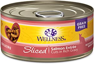 Wellness Complete Health Natural Grain Free Wet Canned Cat Food, Sliced Salmon Entree, 5.5-Ounce Can (Pack of 24)