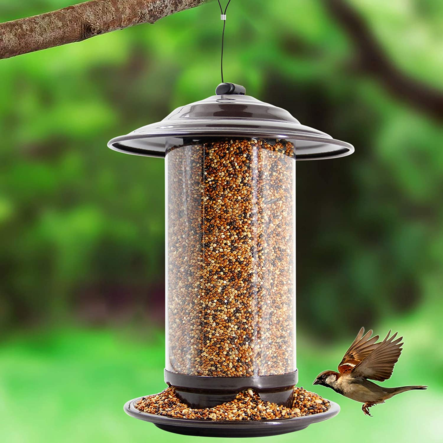 Mestool Panorama Bird Feeder, Wild Bird Feeder Hanging for Garden Yard Outside Decoration, Antique Dome Shaped Roof, Copper