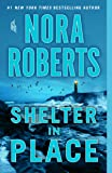 SHELTER IN PLACE INTERNATIONAL EDITION