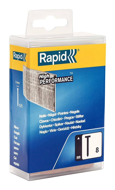 Rapid Clous n/°8//30mm-galvanis/és-Boite de 4200 Clavos Plateado