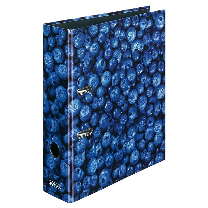 Herlitz 11080678 - Archivador con anillas (8 cm, A4), diseño de pitayas: Amazon.es: Oficina y papelería