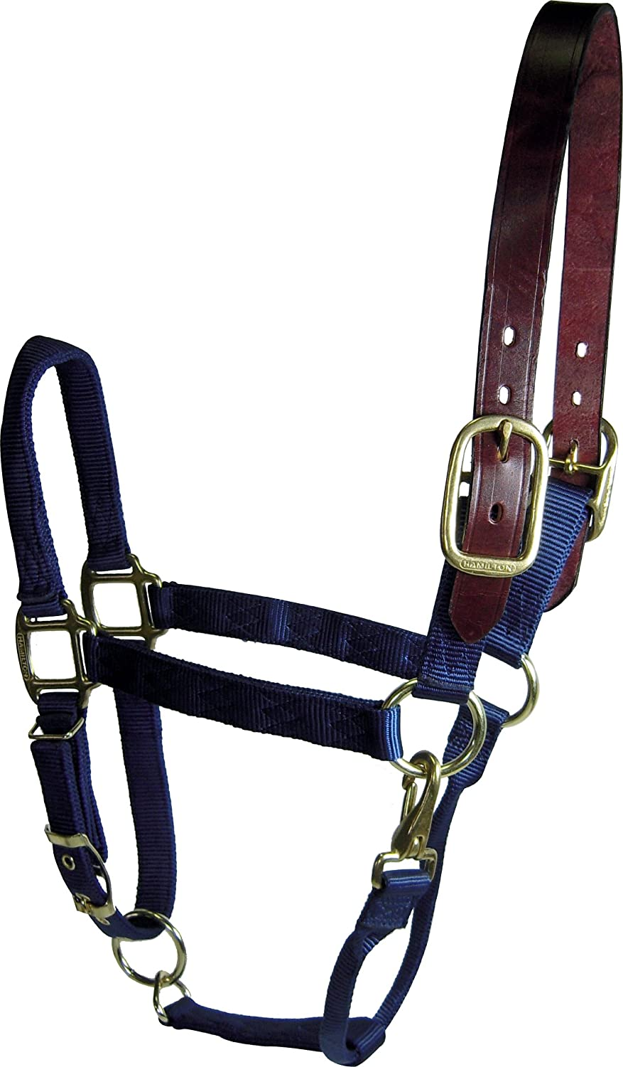 Hamilton 1 Adjustable Leather Head Poll Halter with Brass Snap, Large Size