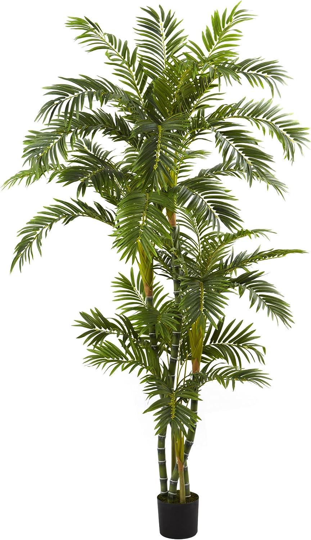 Nearly Natural 5348 Curvy Parlor Palm Silk Tree, 6-Feet, Green