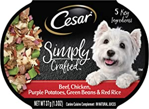 CESAR SIMPLY CRAFTED & WHOLESOME BOWLS Wet Dog Food, Pack of 10