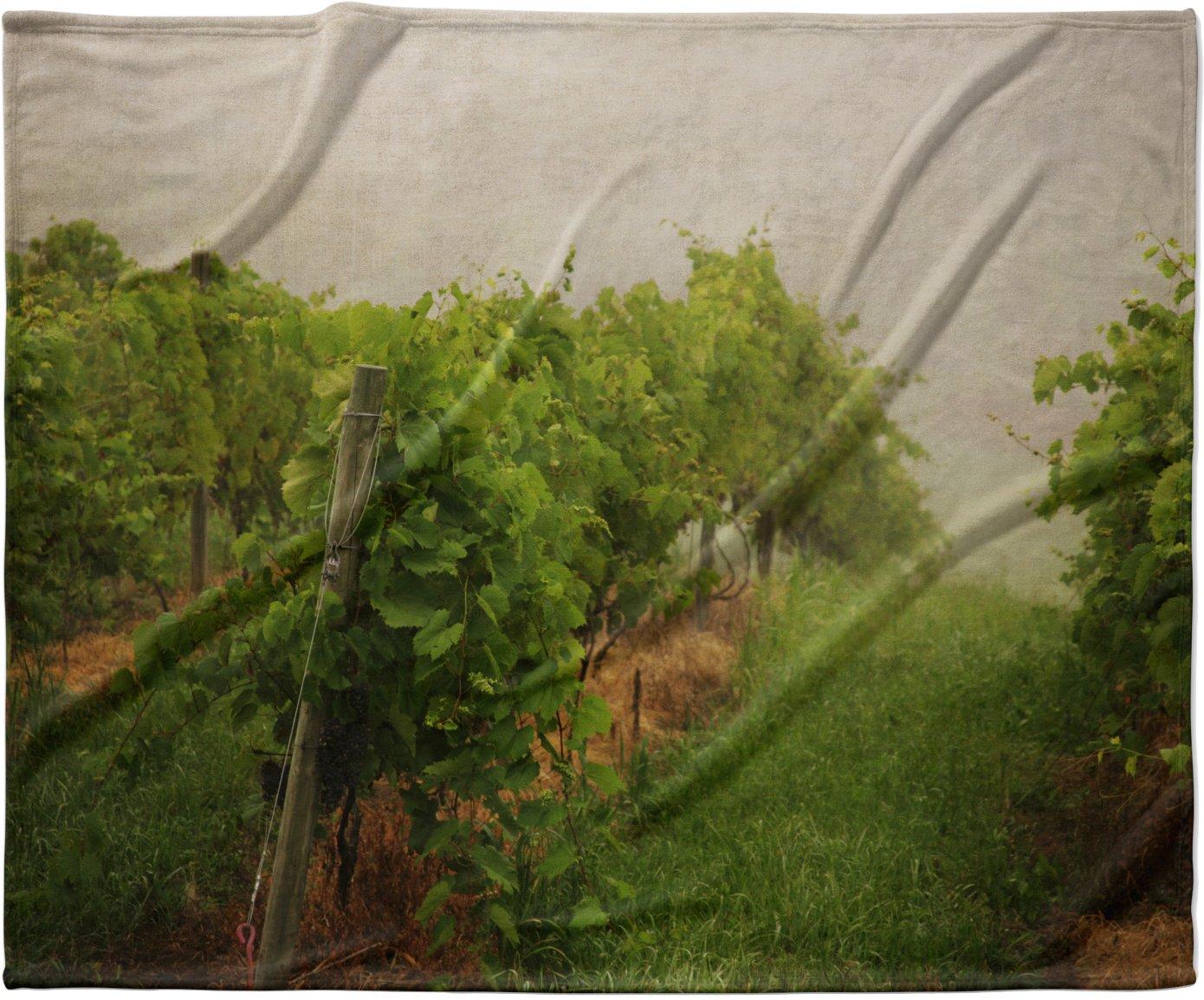 KESS InHouse Angie Turner 'Grape Vines' Foggy Fleece Baby Blanket, 40' x 30'