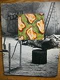 Claude Viallat: 18 novembre-29 janvier 1989, Carré d'art-Musée d'art contemporain, Nîmes -- Mars-Mai 1989, Ecole des Beaux-Arts de Quimper, Centre d'art (préfiguration)