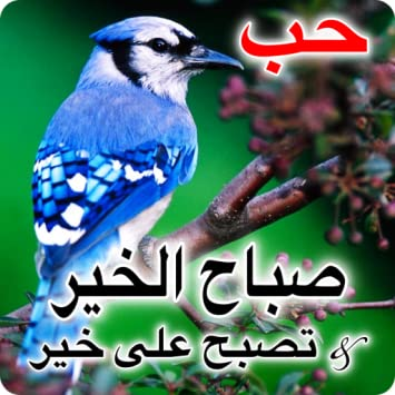 good morning messages in arabic