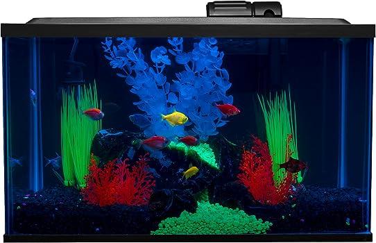 Glofish 10-Gallon Fish Tank