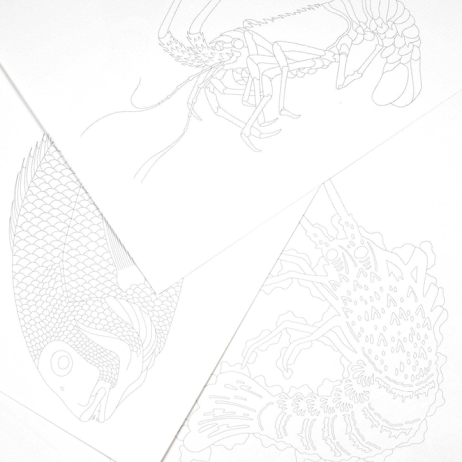 Japanese Designs Artists Colouring Book Books Amazoncouk Pepin Van Roojen 9789460098055