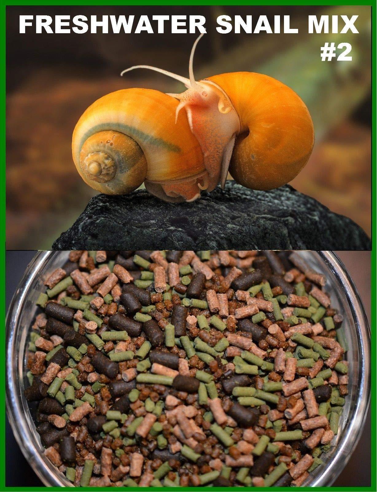 AQUATICBLENDEDFOODS Super Freshwater Snail Mix #2 - Snail,Shrimp,Fish & Crayfish Food (16oz - 1 LB.)- ABF2 by AQUATICBLENDEDFOODS