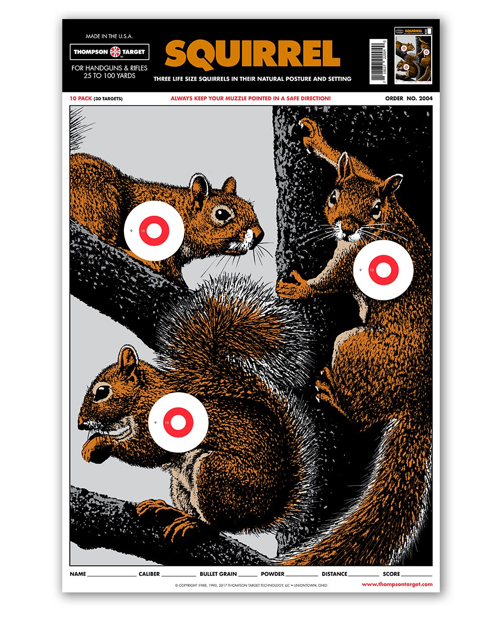 image relating to Squirrel Target Printable referred to as : Lifetime Sizing Squirrel - Paper Searching Taking pictures