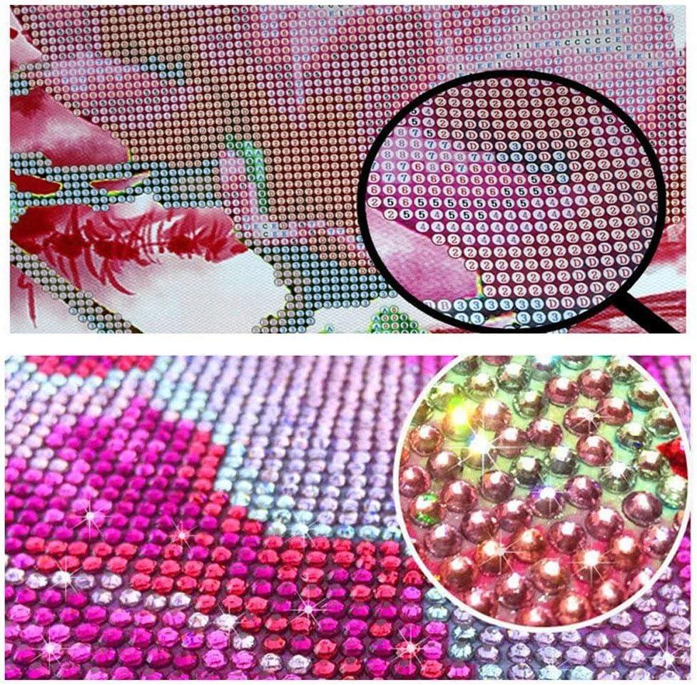 Diamond Painting,Fee Umarmung Schwarze Katze DIY Diamond Cross Stitch Pictures Painting Number Kit 5D Crystal Rhinestone Embroidery Kits DIY Wall Art Decor Fairy, 30 * 30cm