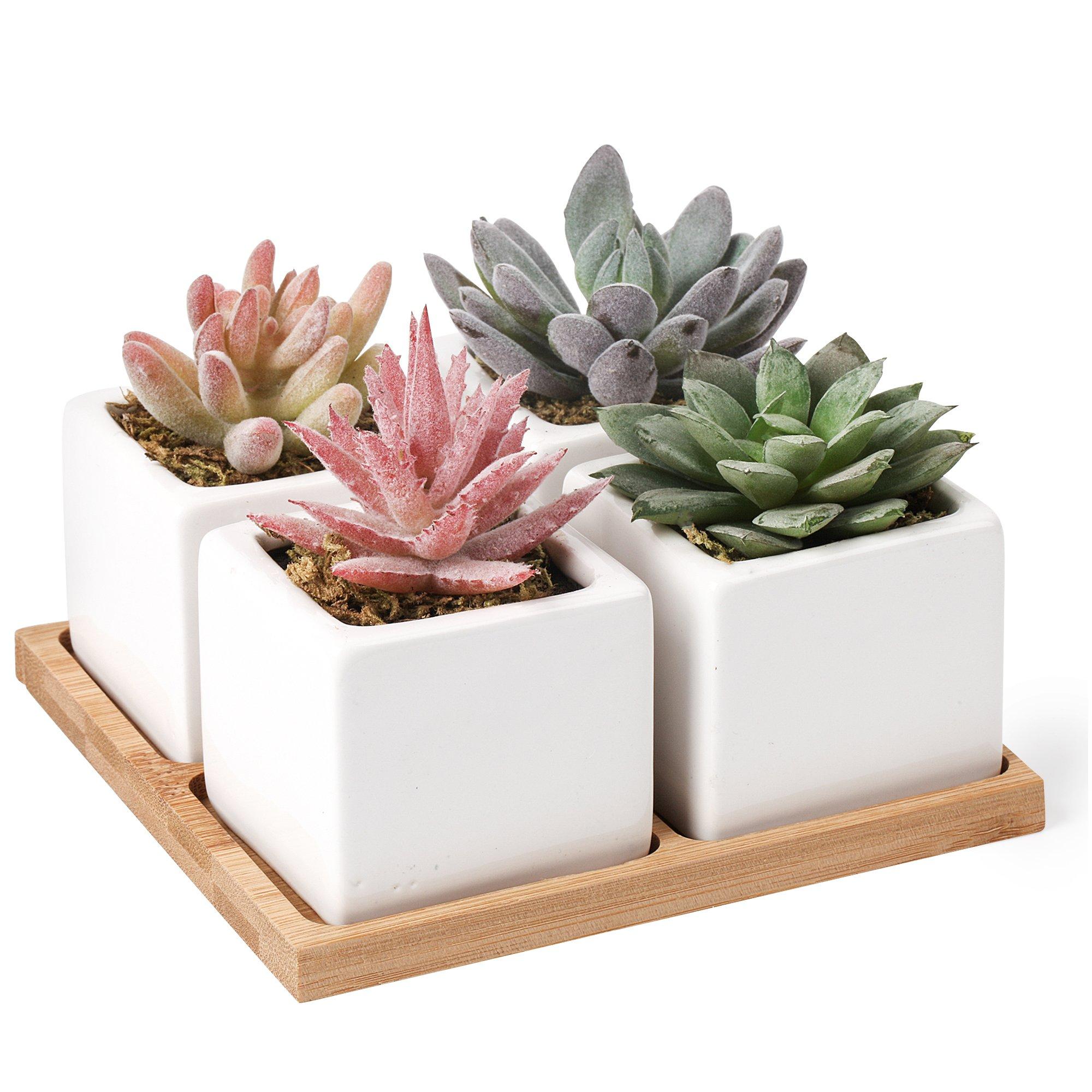 Artificial Succulent Plants Potted - Fake Succulents - Set of 4 - Home, Bath, Office Decor - Faux Potted Plants - Decorative centerpieces Pots for Table, Bedroom, Patio, Bathroom, Shelf