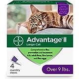 Advantage II Prevención y tratamiento de pulgas para gatos grandes, más de 9 libras