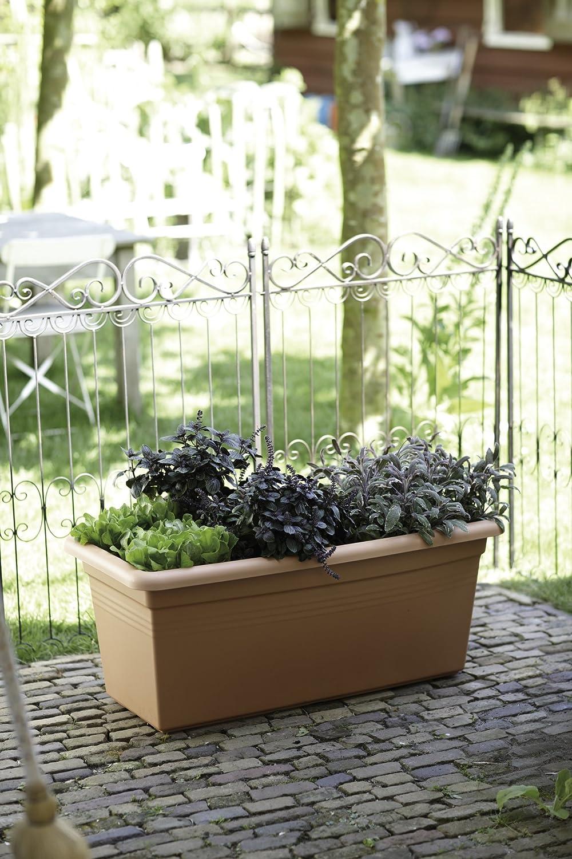 Elho green basics garden xxl 60cm planter - lime green 9112865939700