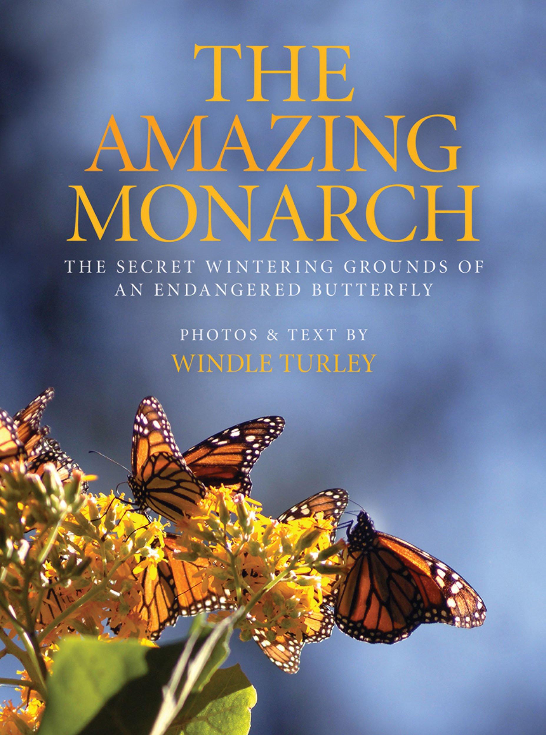 amazon com the amazing monarch the secret wintering grounds of