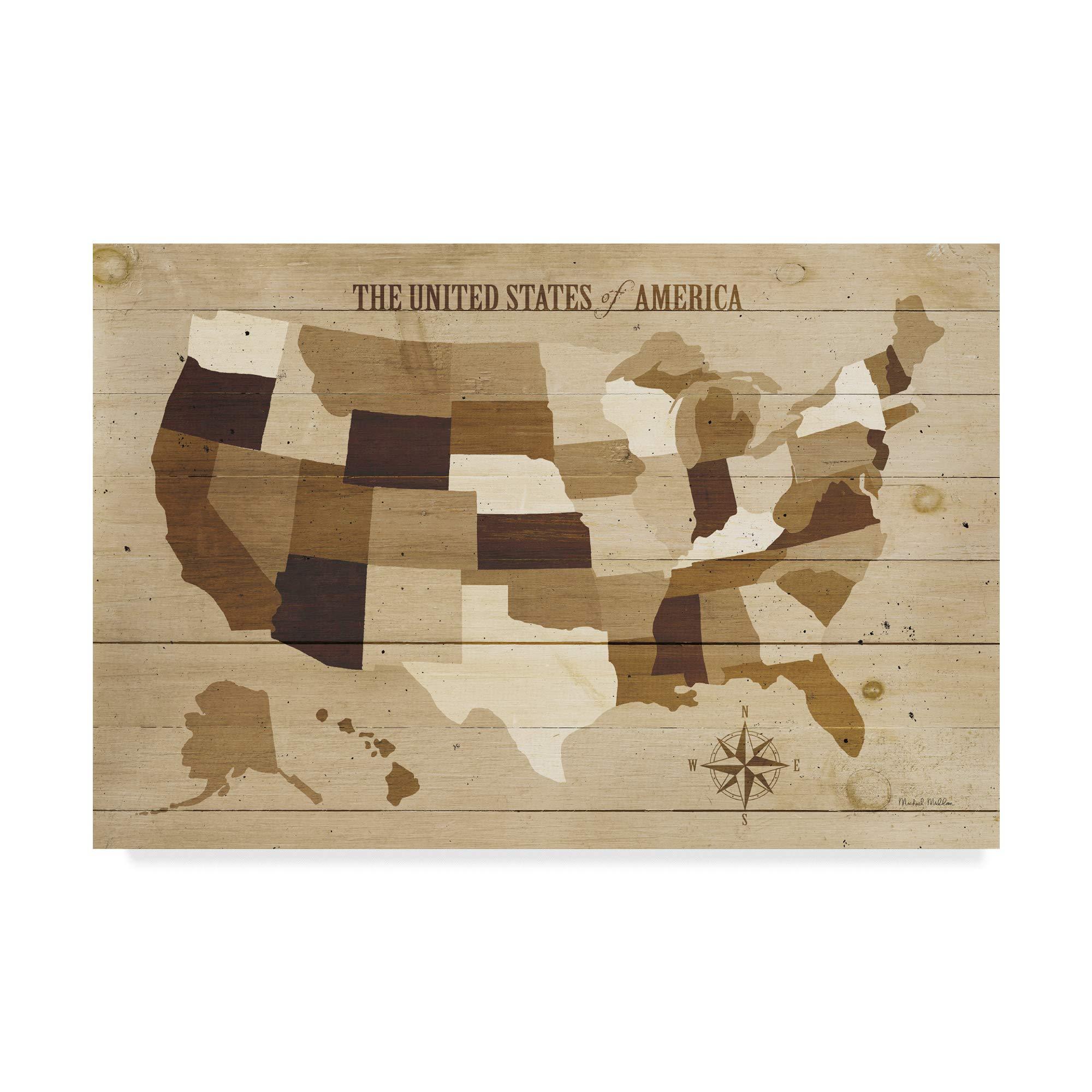Trademark Fine Art USA Modern Vintage Wood by Michael Mullan, 22x32-Inch