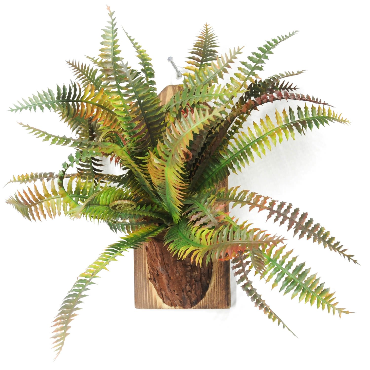 Velener Wall-Hanging Fake Grass in Wood Vase Artificial Succulents for Home Decor (Brown, Green)
